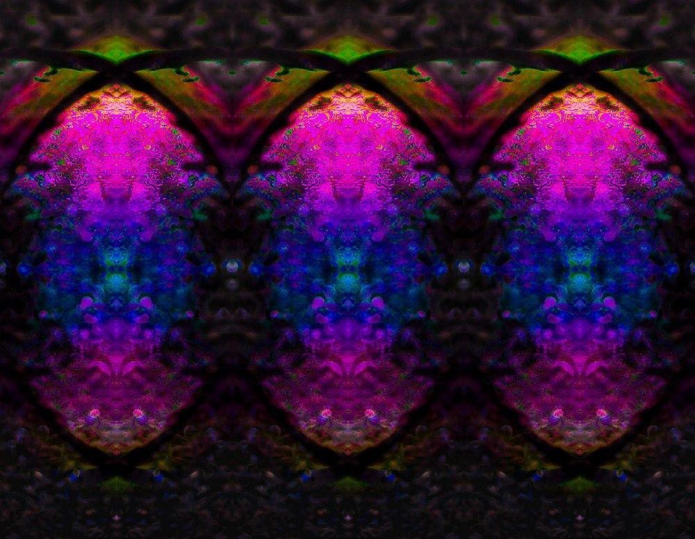 DSC02190-Edit.jpg
